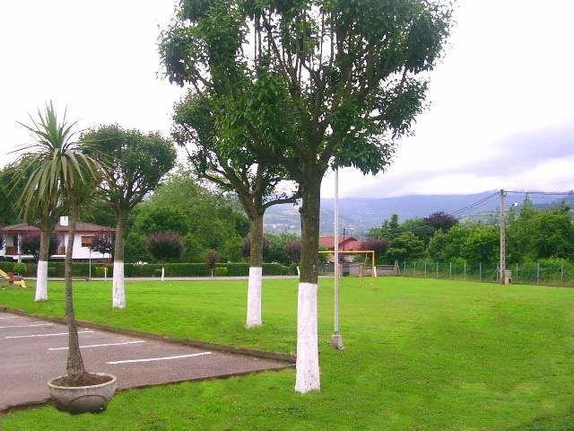 La Carbayera