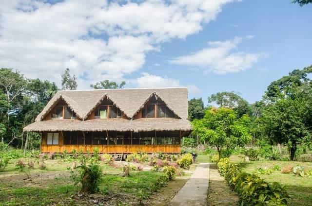 Monte Amazónico