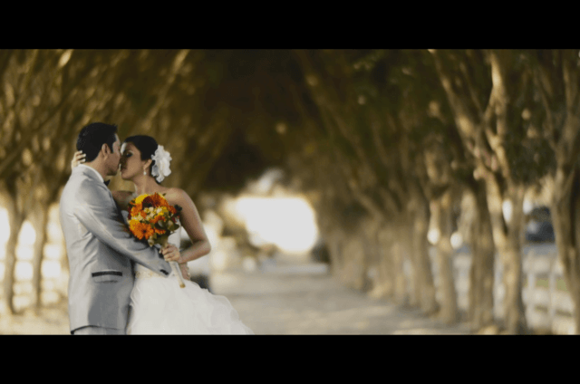 Flashdream Weddings