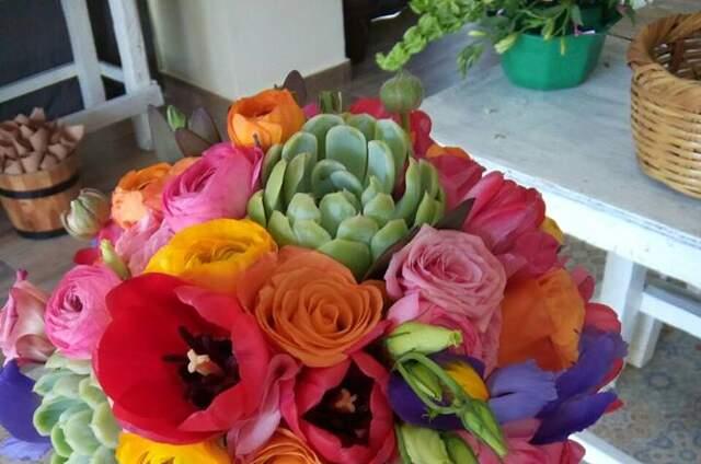 Cattleya Florería