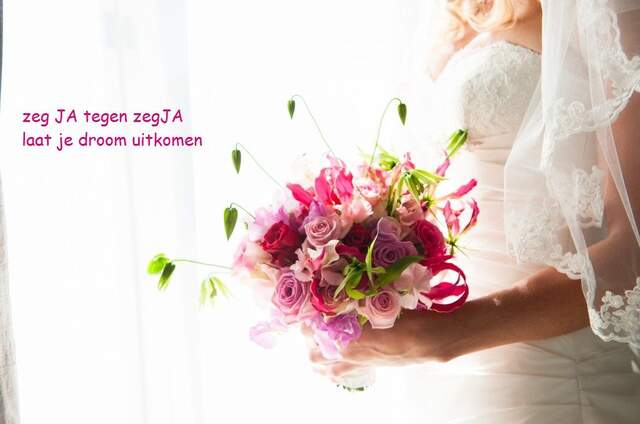 zegJa Weddingplanner