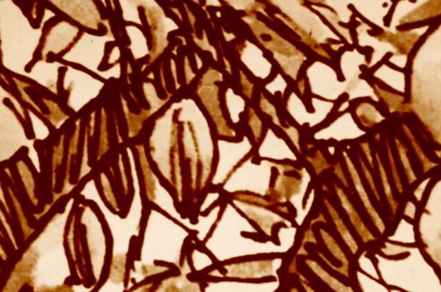 Chocolates Andino
