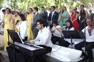Ensambles Musicales Profesionales