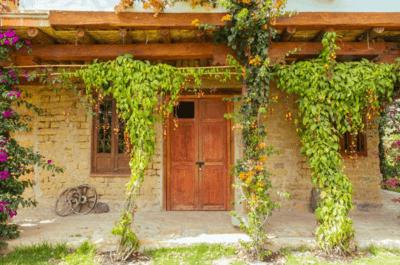 Casa Antares (Alkila)
