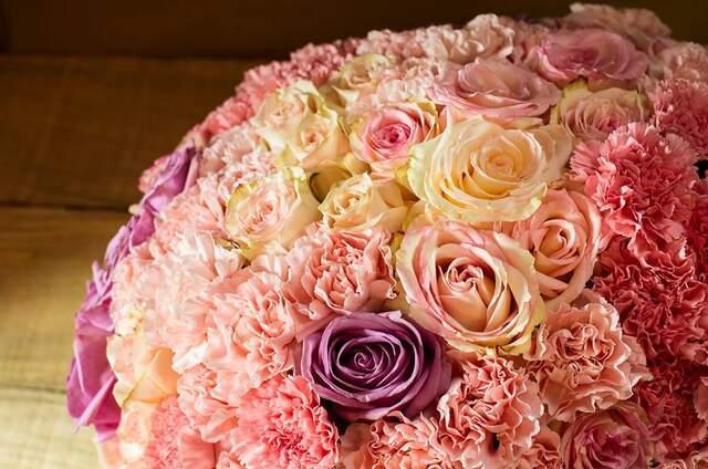 Musa Taller de Flores