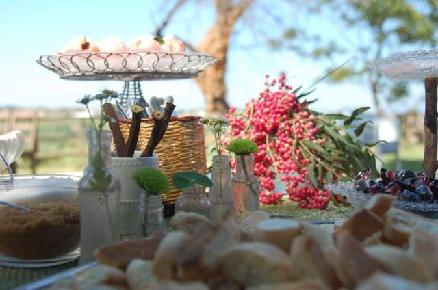Agriturismo Campoletizia