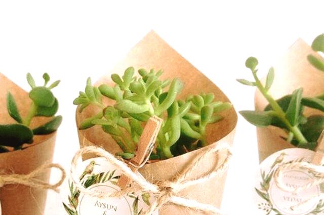 C Bouquet