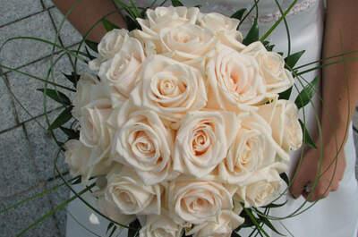 Beko Blumen