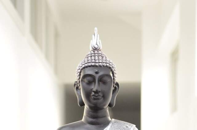 Bio'ty Zen