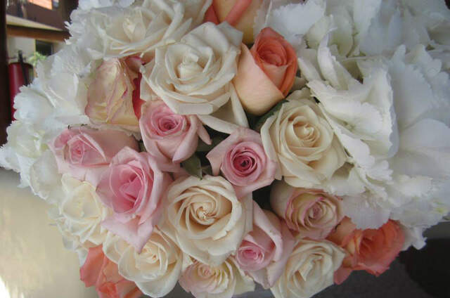 Mazarte Floral